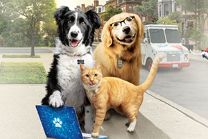 Odeon Cinema : Cats & Dogs 3: Paws Unite