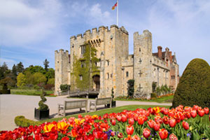 Hever Castle : Tulip Celebrations