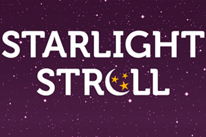 Hospice in the Weald : Starlight Stroll for Hospice in the Weald